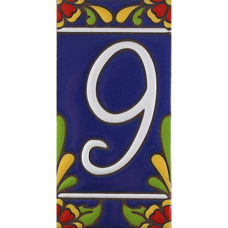 House Number 9:Blue with Red Flowers