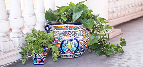 Talavera Planters - TP180 and TP150