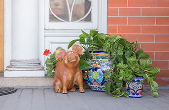 Talavera Planters - CBP005, TP150 and TP180