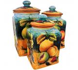Square Fruit Kitchen Canister