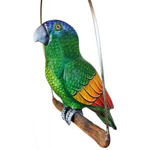 Blue-Headed Parrot on Perch