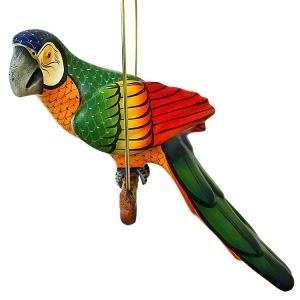 Green Macaw on Perch