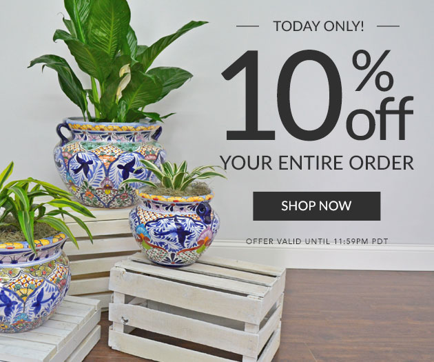Today Only 10% Off Your Entore Order