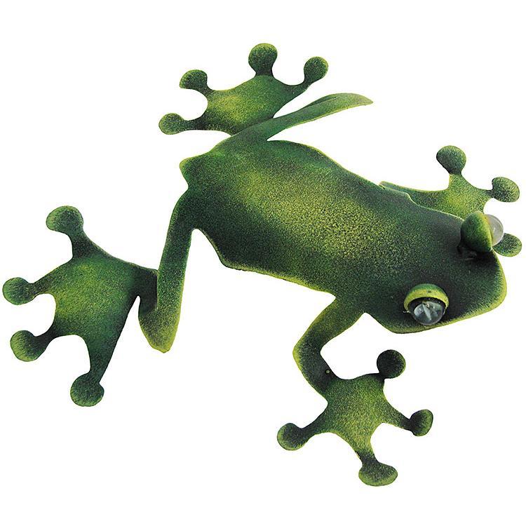 Lazy Tree Frog