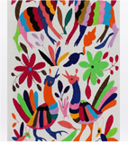 Otomi Tapestries