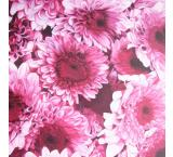 Chrysanthemums  Oil Painting on Canvas