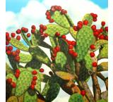 Prickly Pear Oil Painting on Canvas
